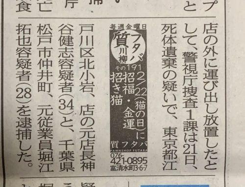 2/22(猫の日)に 招福・金運 招き猫